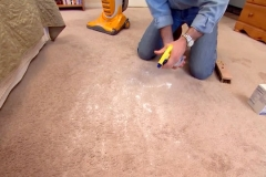 How to clean your carpets like a pro