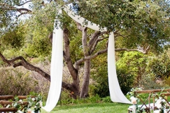 Learn how to pull off the ideal backyard wedding